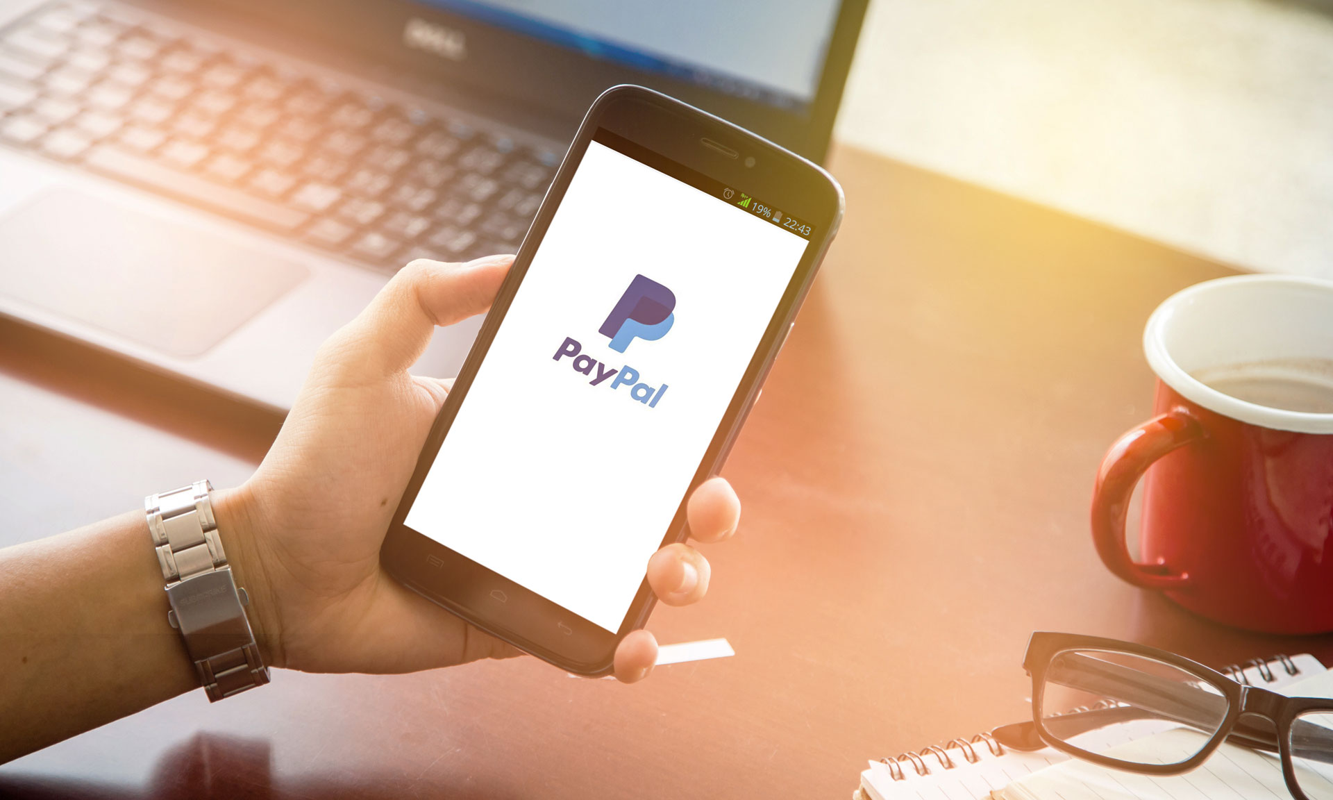 PayPal-You-everything-should-know-about-it